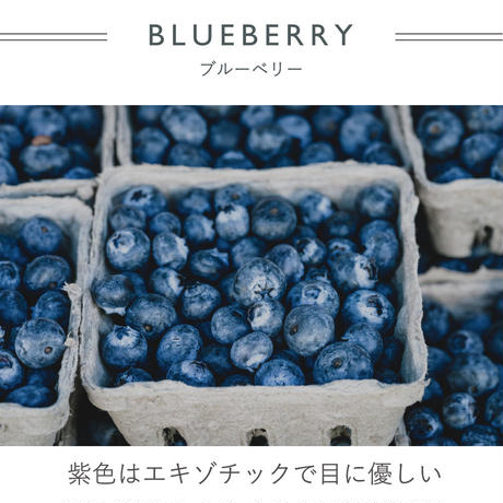 FT040305M / Tシャツ  FEMALE -  blueberry  -