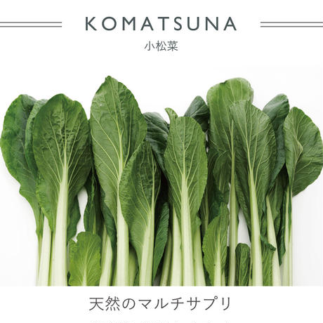 FT01050412M / SHOPPING BAG  M -  komatsuna  -
