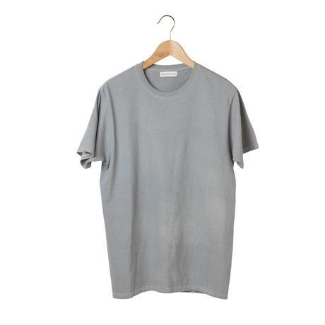 Tシャツ  MALE -  echinacea B  -