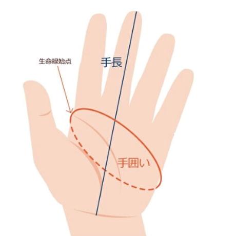 7251_Championship Gloves - Long Finger