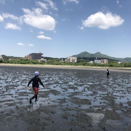 6月 干潟でいきもの探し|ベーシック単発参加【4歳〜小2】