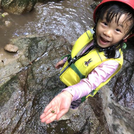 8月山の沢に探検にいこう! ベーシック単発参加【4歳〜小2】