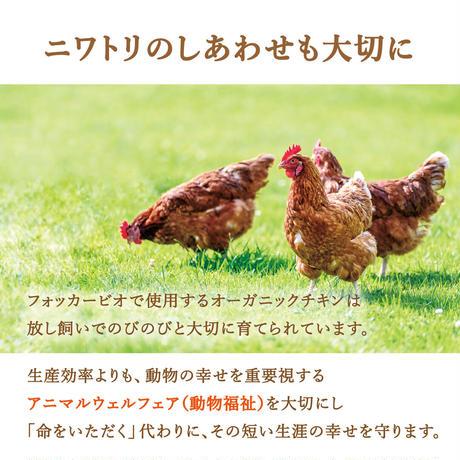 フォッカービオドッグ(成犬用)無添加オーガニックドッグフード お試し 150g【今だけ送料無料】