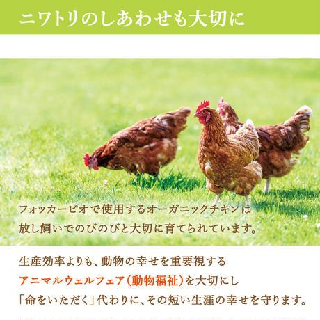 【まとめ買い・2個セット】フォッカービオキャット(成猫用)無添加オーガニックキャットフード 2.5kg