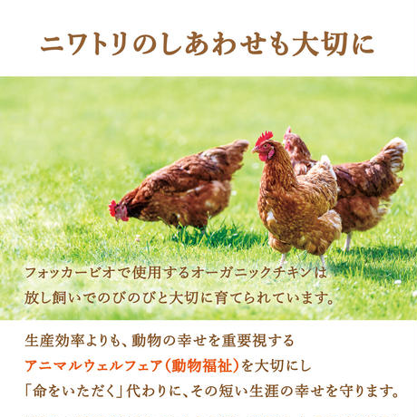 【おトクな定期便・3個セット】フォッカービオドッグ(成犬用)無添加オーガニックドッグフード 2.5kg 【送料無料】