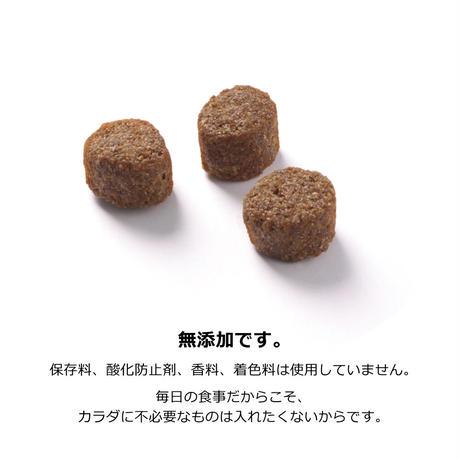 【おトクな定期便・4個セット】フォッカービオドッグ(成犬用)無添加オーガニックドッグフード 2.5kg 【送料無料】