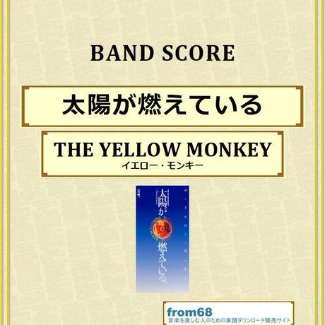 ザ・イエロー・モンキー(THE YELLOW MONKEY) / 太陽が燃えている バンド・スコア(TAB譜) 楽譜