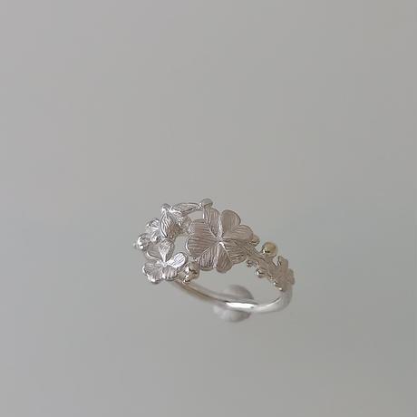 幸せを運ぶ ring