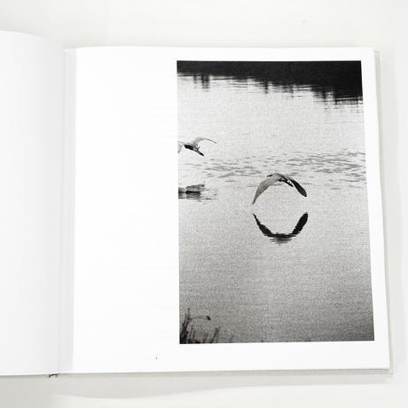 西野壮平『WATER LINE. A STORY OF THE PO RIVER』(サイン入)