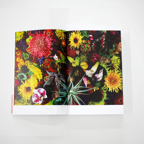 Encyclopedia of Flowers-植物図鑑