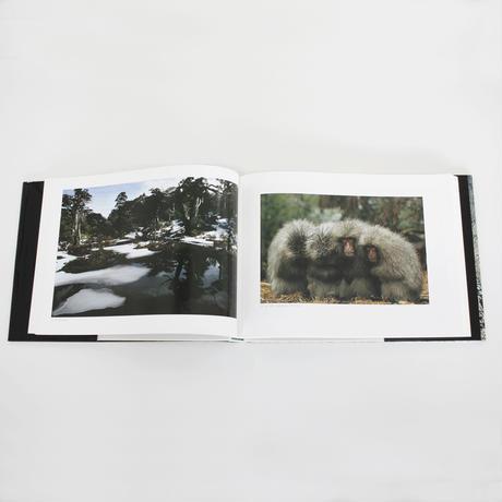 水越武『水越武写真集 森林列島』
