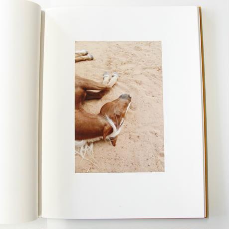Jitka Hanzlova『HORSE』
