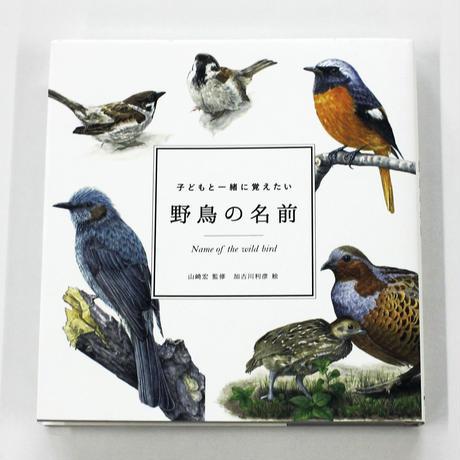 山﨑宏 『子どもと一緒に覚えたい野鳥の名前』