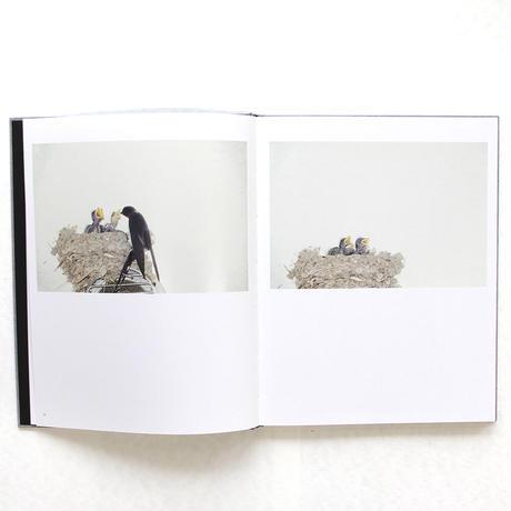 川内倫子『Des oiseaux』