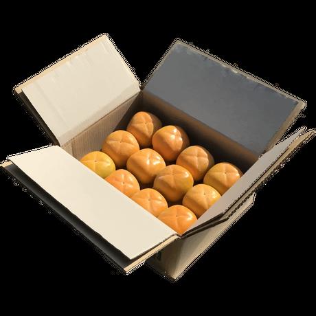 佐渡島のおいしい柿 5kg 2L 21個。