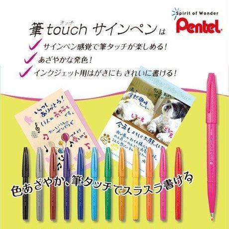 ぺんてる 筆タッチサインペン SES15C 12色セットまとめ買い