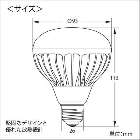 LEDECO LPL13WB / 電球タイプ