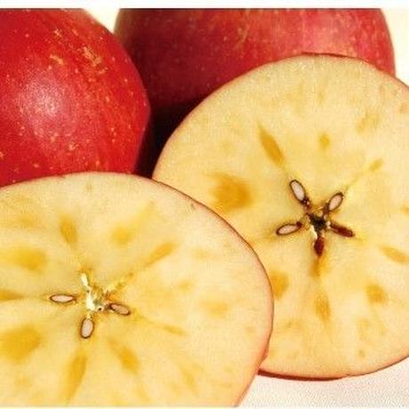 果実職人の極上りんご 9~10玉 3kg