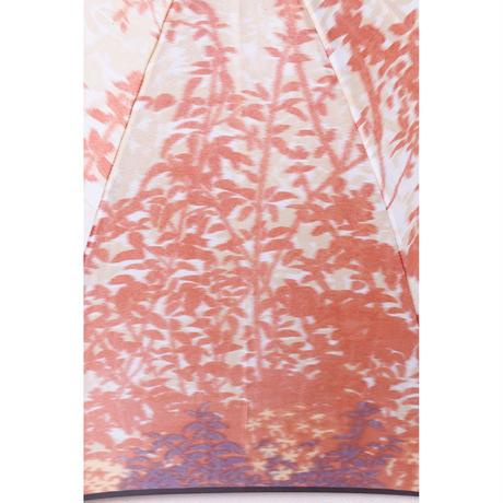 森林/紅葉