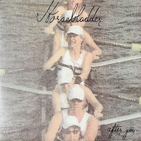 Horsebladder / Farewell My Concubine - After You / American Telepathic Scumbag [LP][Hot Releases]