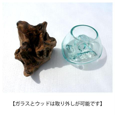 KAYU KACA   -カユカチャ-[BG-K-1015]