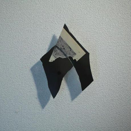 田中一太「未然の表皮15」197×145mm     Tanaka Ichita