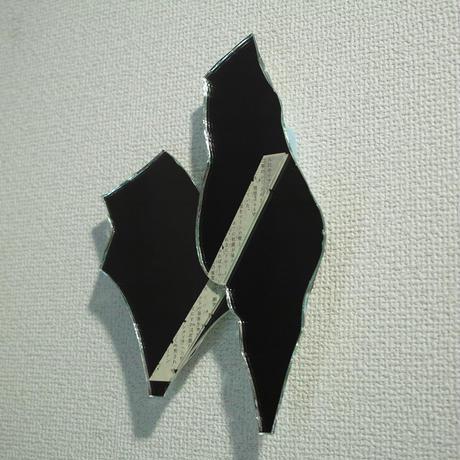 田中一太「未然の表皮9」237×162mm     Tanaka  Ichita