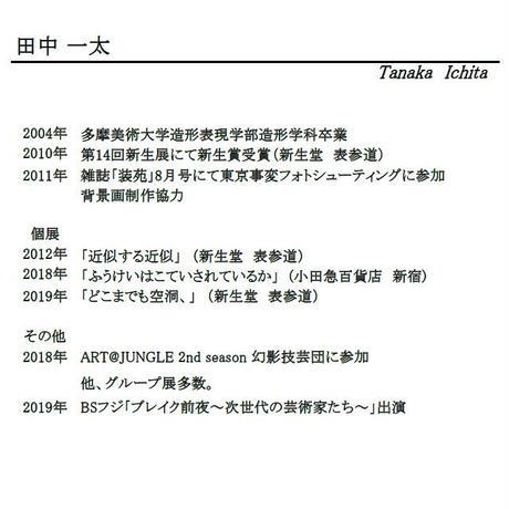 田中一太「雲の上の自画像1」255×400mm     Tanaka Ichita