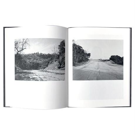 """""""Arboreal"""" - Virginia Wilcox"""