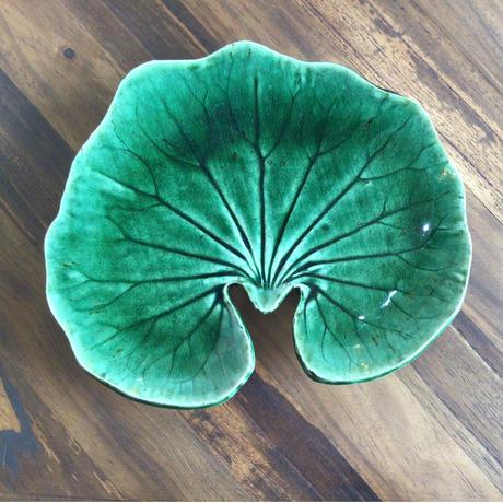 葉皿 つわぶき