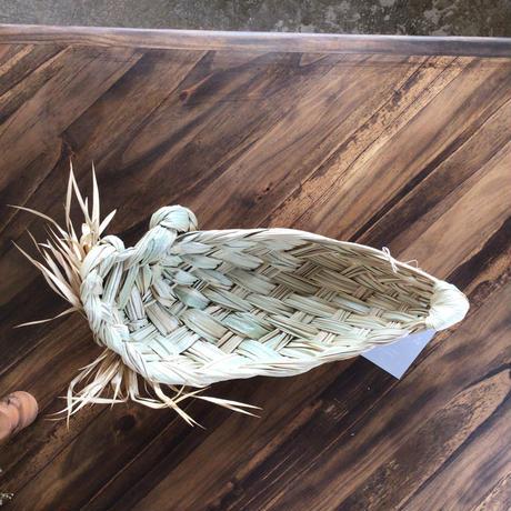 種水土花 クバトレイ