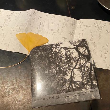 木々/藤井邦博