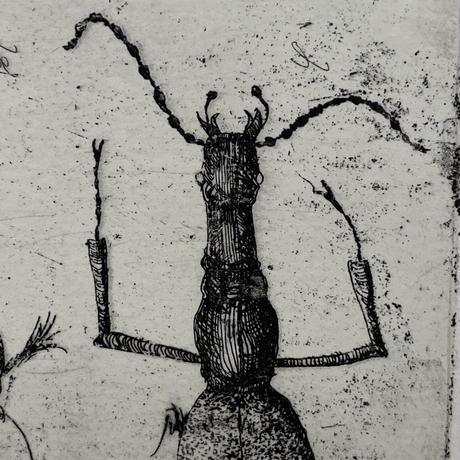 object(銅版画)