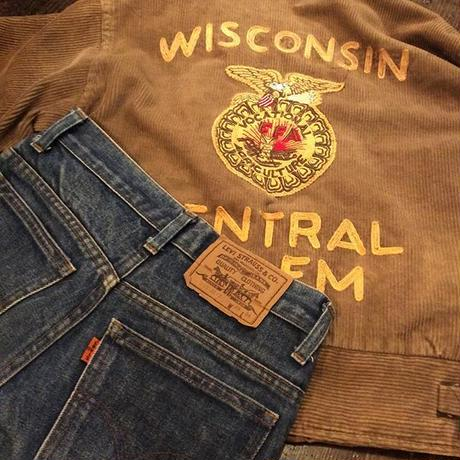 [USED] Levis 630 cut off  SHORTS