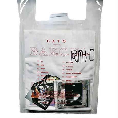 BAECUL vinyl bag -type A-