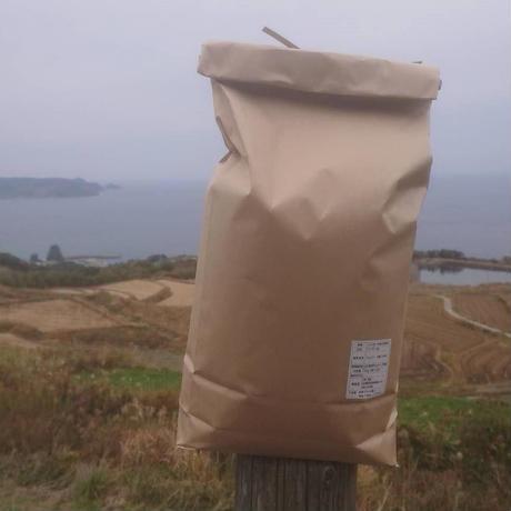 新米 ごりやく米(東後畑棚田こしひかり) 白米(5kg)