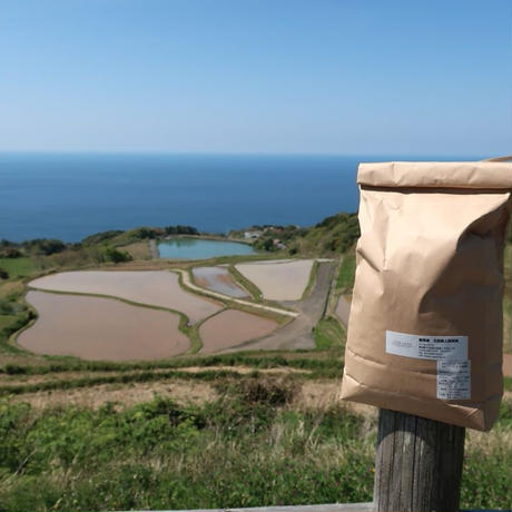 新米 ごりやく米(東後畑棚田こしひかり) 玄米(1kg)