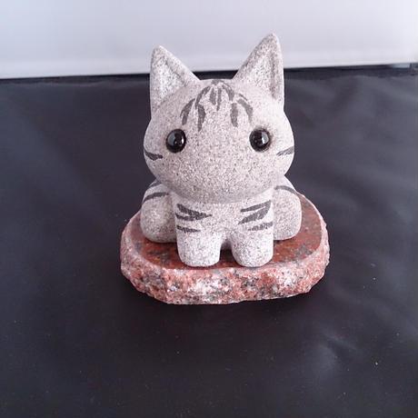 なごみ猫(シマ)