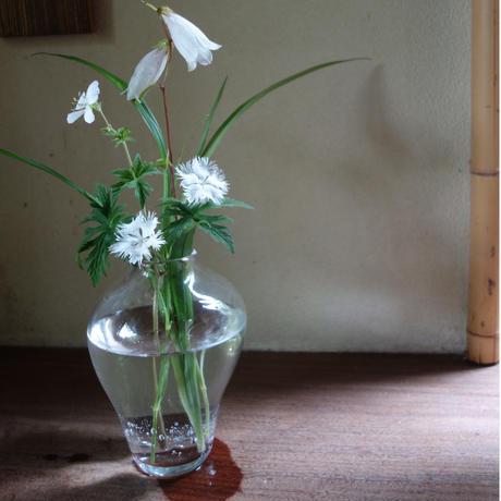 Akemi Kaminaga 瓶子ガラス花器