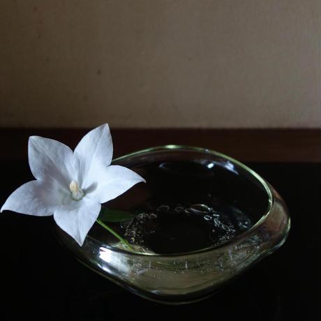 Akemi Kaminaga 琵琶湖彩ガラス水盤