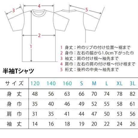 [琉球ぴらす×阪神×宜野座]21CP限定T-虎×シーサー