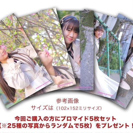 宮内桃子写真集 (ブロマイド5枚セットのおまけ付き)