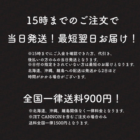 JET CANNON 15m延長ホース