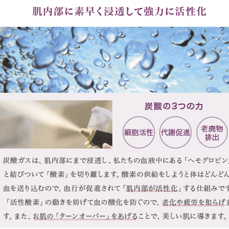 炭酸ミスト機専用 炭酸ガスカートリッジ/74g×5本