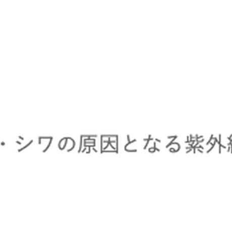 《初回お試し》DDパーフェクト ナチュラルリーフ ファンデーション/本体・パフ付き(※クーポンご利用不可)