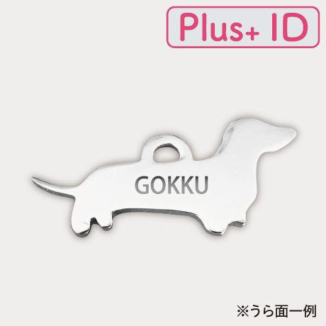 ボールチェーンストラップ 【Plus+ ID付】/ダックス(M)
