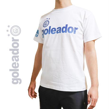 グラデーション BOXロゴ プリント綿 Tシャツ G-2428