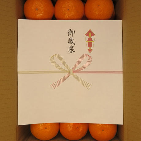 温州みかん(5kg箱)
