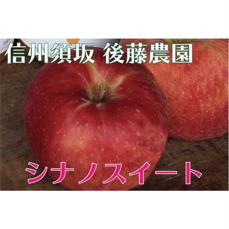 【2020年販売終了しました】シナノスイート5kg☆農家直送 甘くてジューシー