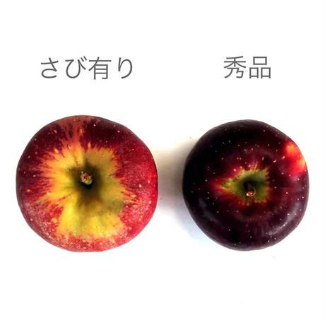 【2021年 終了しました】さびあり秋映(B品)5kg ☆味は同じでワケありお得♪少し硬めで果汁たっぷり濃厚